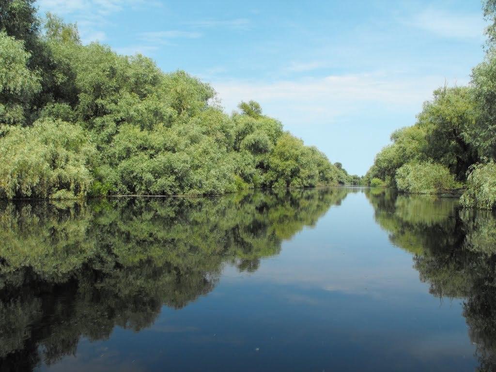 pescuit in delta pe litcov