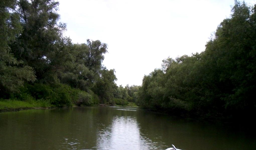 pescuit la somn pe canal perivolovca