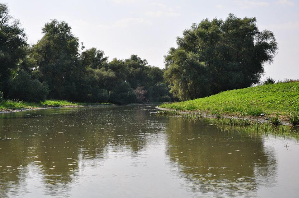 pescuit la biban pe canalul sireasa din delta
