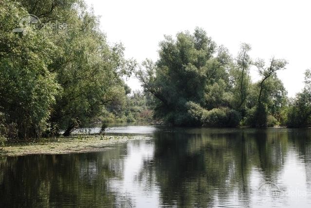 pescuit la stiuca pe lacul bogdaproste