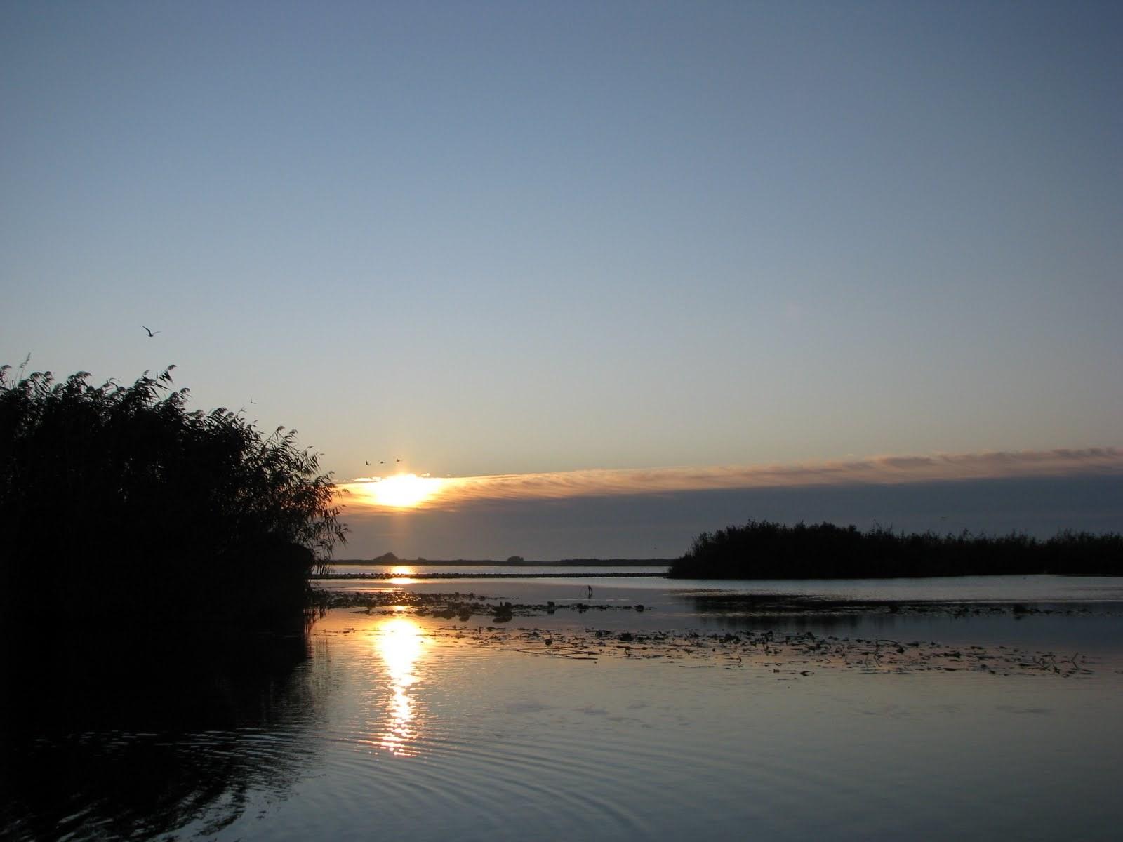 pescuit pe lacul radacinos cu barca cu motor delta