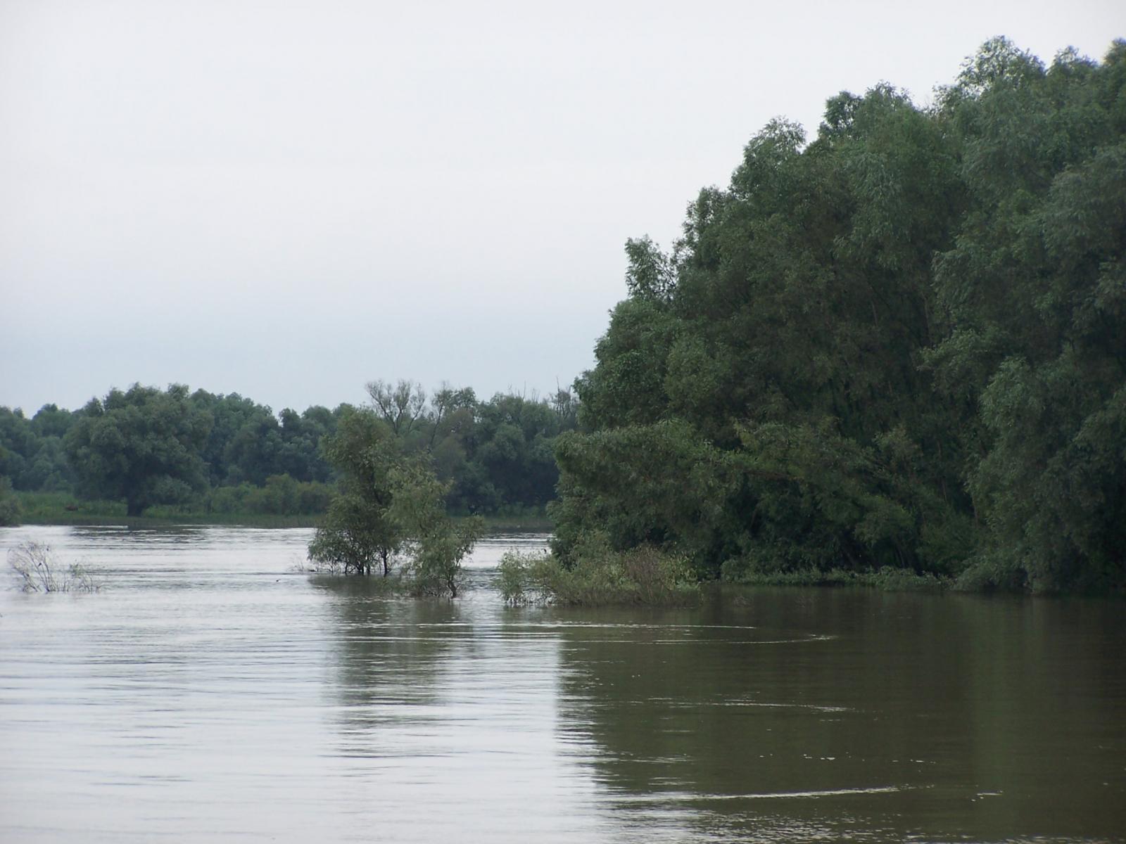pescuit la crap pe lacul erenciu in delta