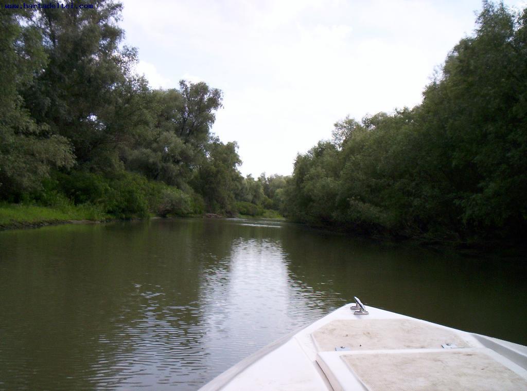 pescuit la stiuca pe lacul gorgostel in delta