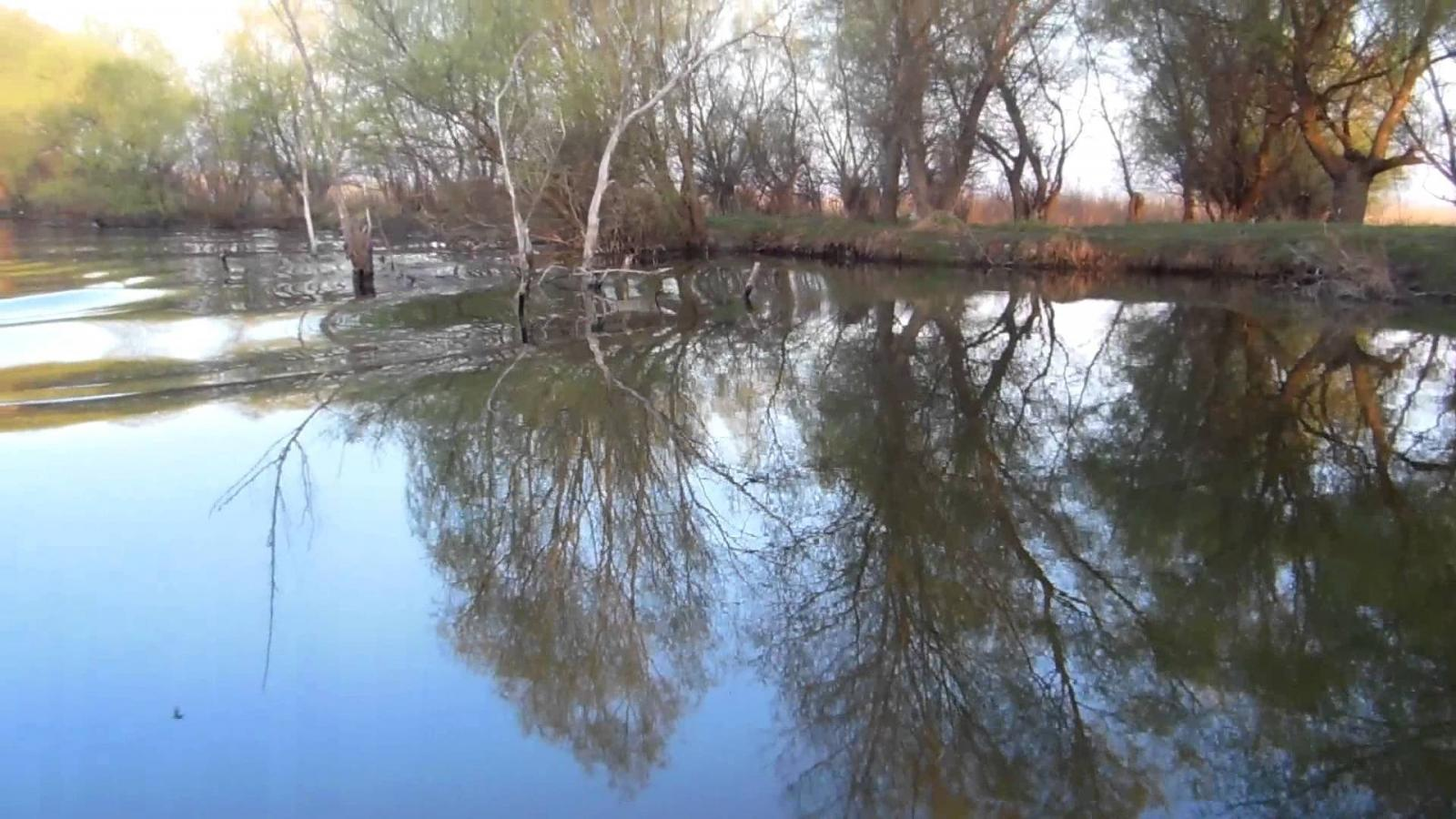 pescuit la crap pe lacul iacub din delta