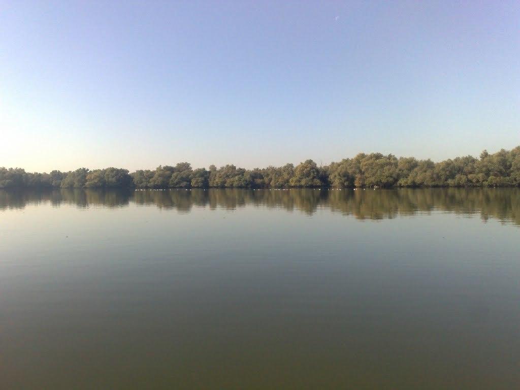plimbare cu barca pe lacul mster in delta