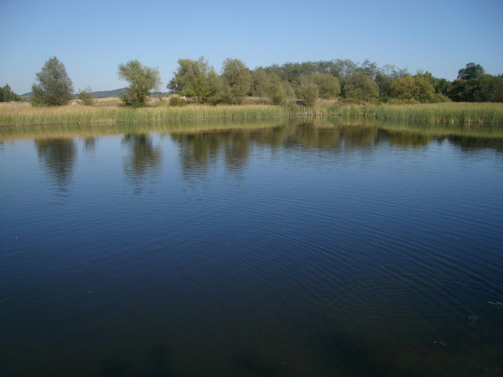 plimbare cu barca pe lacul potcoava in delta