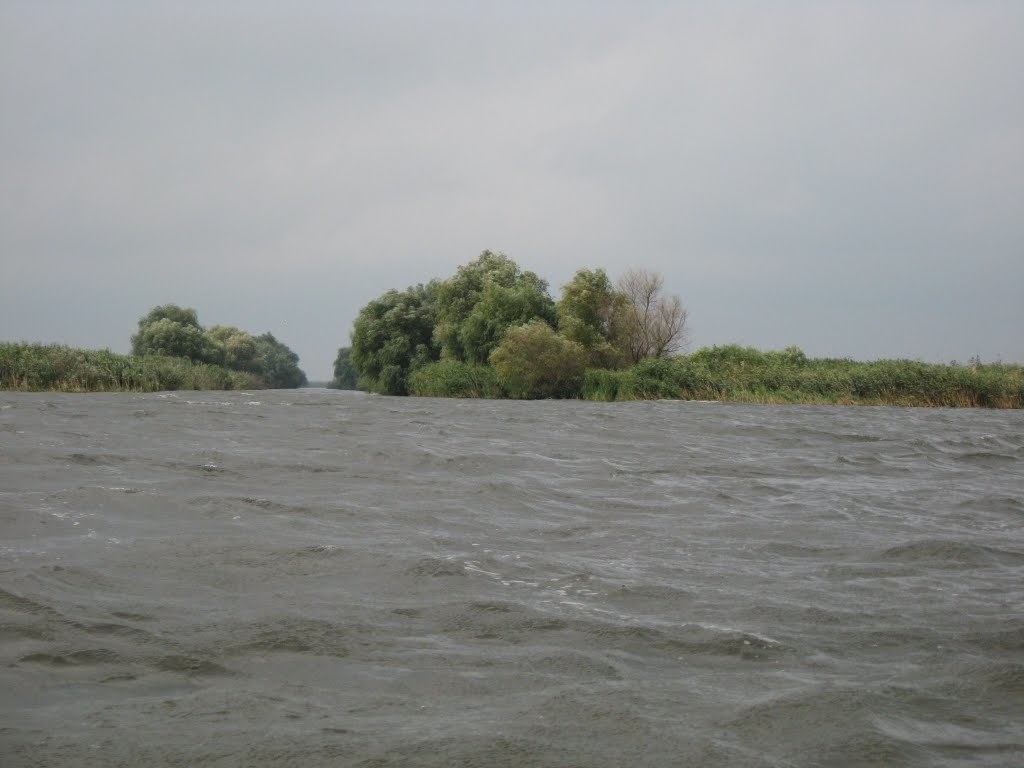 pescuit pe lacul puiu in delta dunarii