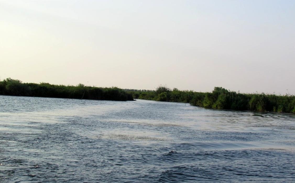 pescuit la stiuca si biban pe lacul puiulet din delta