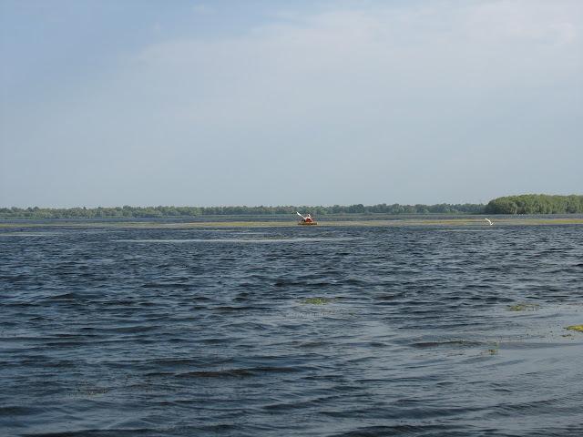 pescuit la stiuca pe lacul rotund in delta