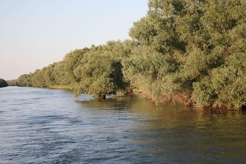 pescuit la stiuca pe lacul tranova din delta