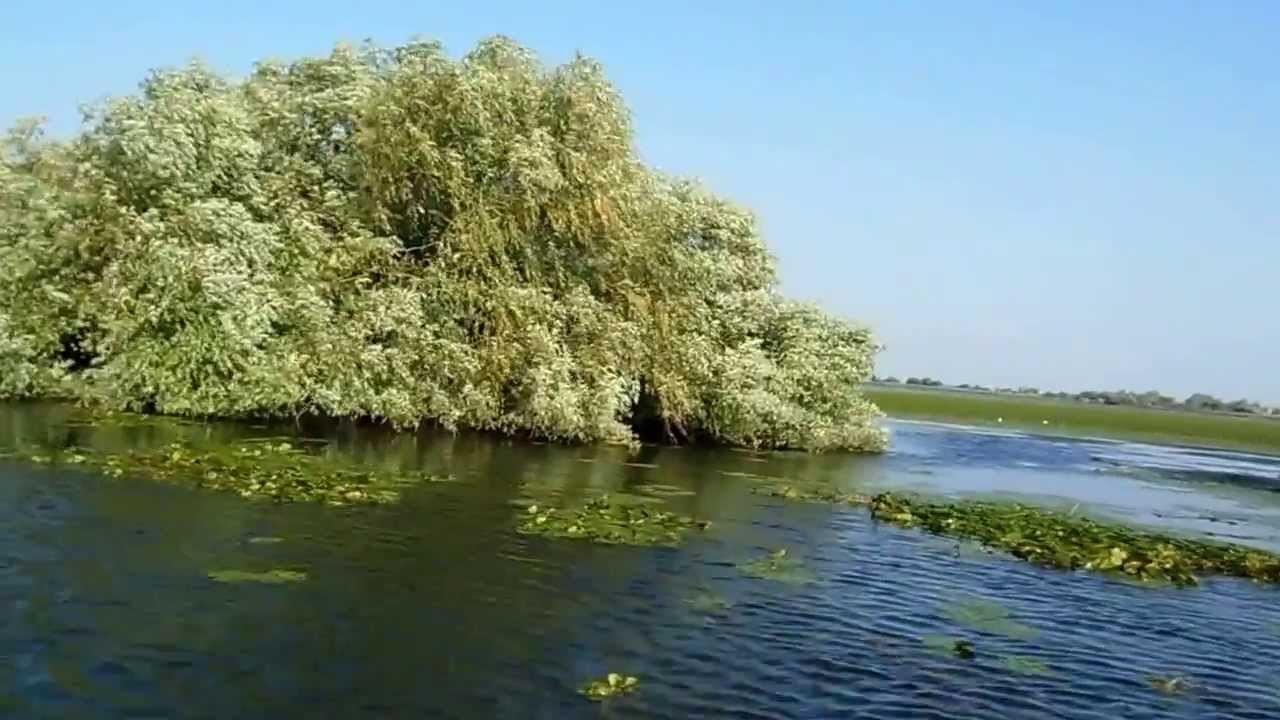 plimbare cu barca cu motor pe lacul uzlina