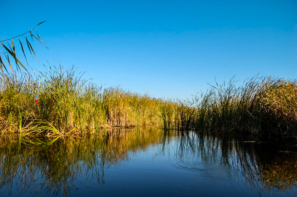 plimbare cu catamaranul pe canalele din Delta Dunarii