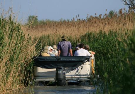 excursii de 1 zi in delta