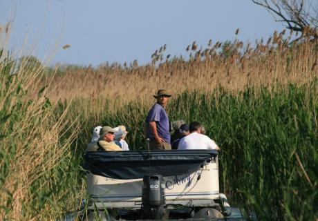 excursii in delta dunarii august de sfanta maria