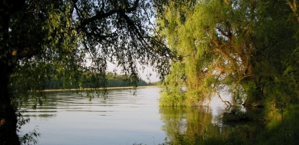 Vechiul brat al Dunarii