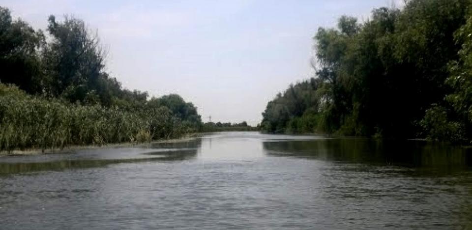pescuit la somn pe canal dranov