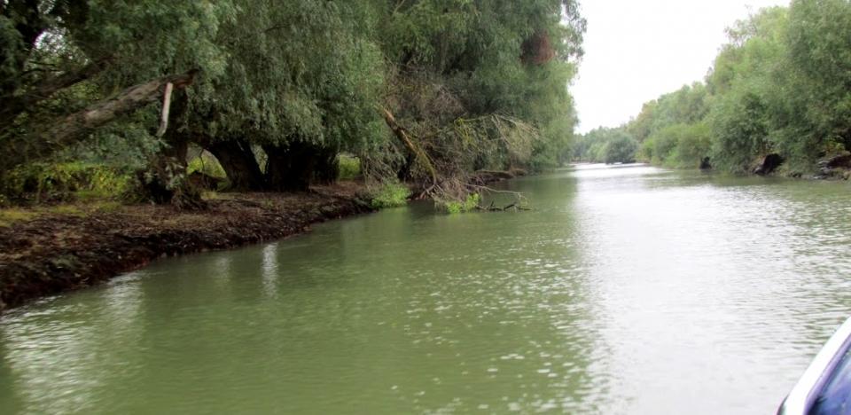 pescuit la stiuca pe canalul dunavat