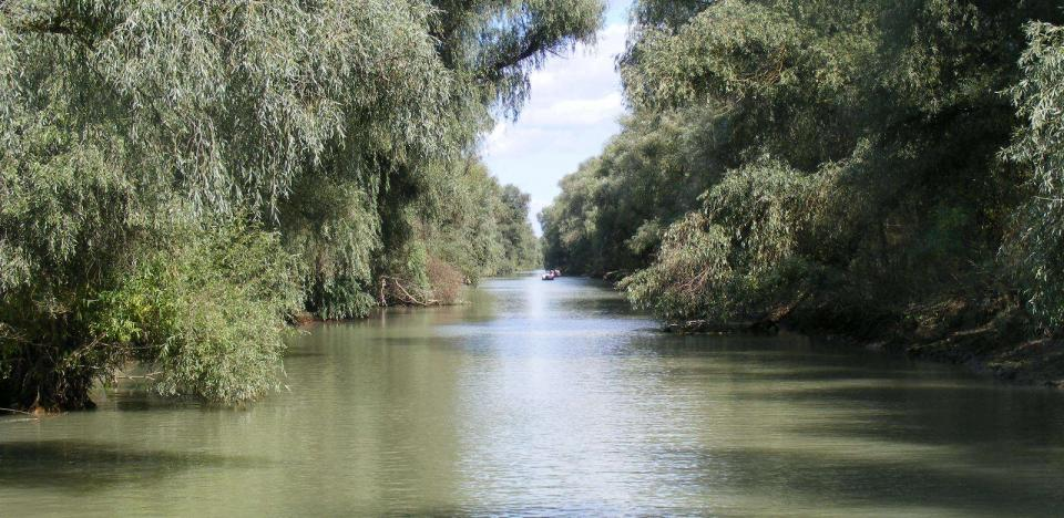 canalul uzlina brat sfantu gheorghe