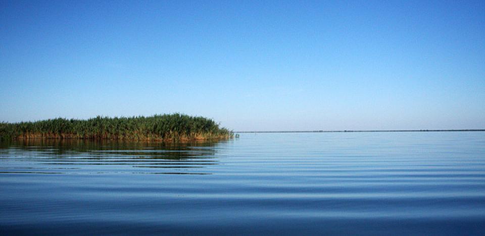 pescuit la stiuca pe lacul rosu in delta