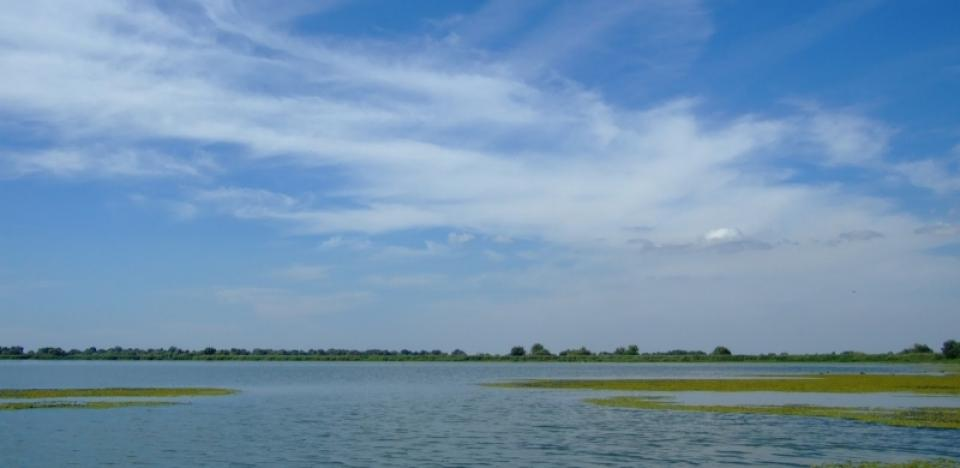 plimbare cu barca pe lac si urmariti pasarile