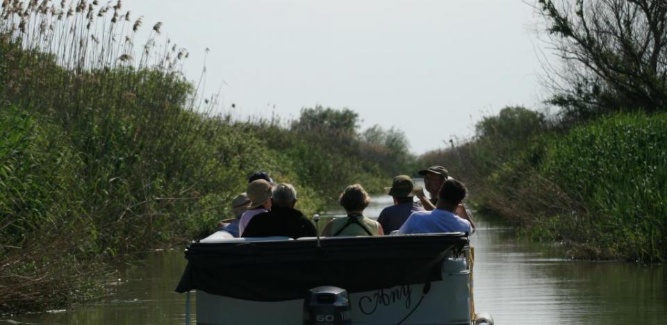 plimbari pe canale cu barca