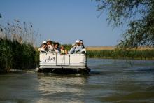 Plimbare cu catamaranul în Delta Dunării
