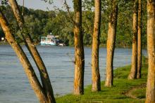 La pas prin Delta Dunării